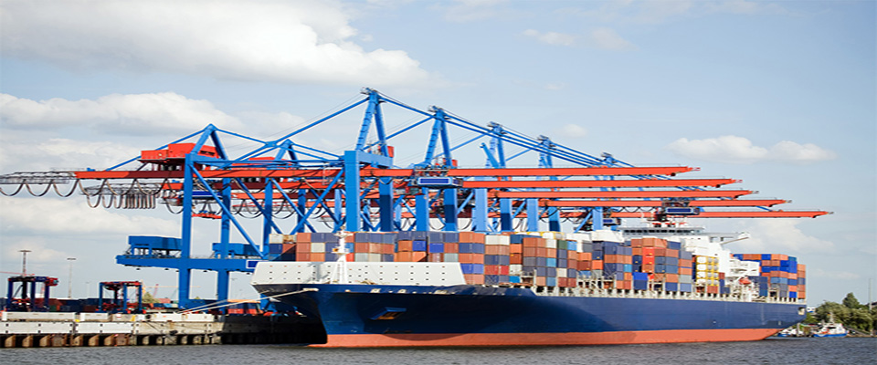 LCL and FCL sea freight services New Zealand to Vietnam and otherwise